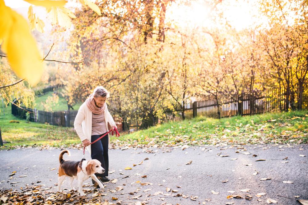 Как да живеем по-дълго и здравословно